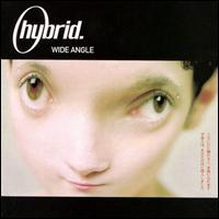 Hybrid_wide_angle